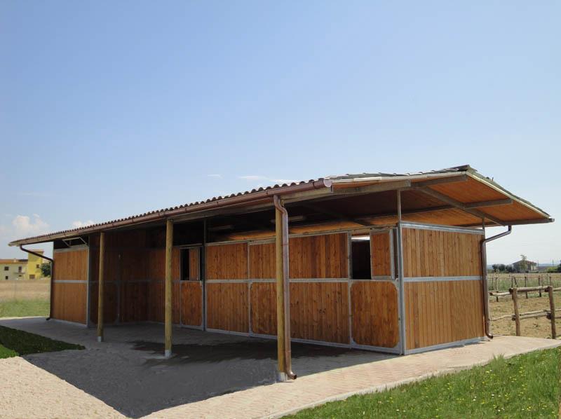 box per cavalli strutture maneggi e allevamenti cavalli